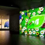 ENVision Gallery Promotes Green Living and Taking Care of our Environment